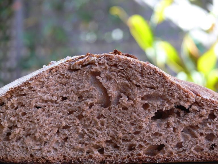 Pan de espelta con masa madre - El clan de los sin trigo