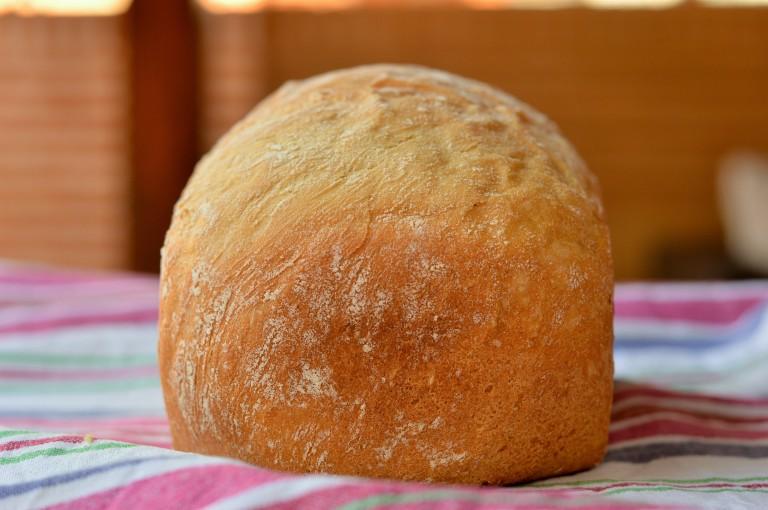 Pan 100% tritordeum en panificadora- El clan de los sin trigo